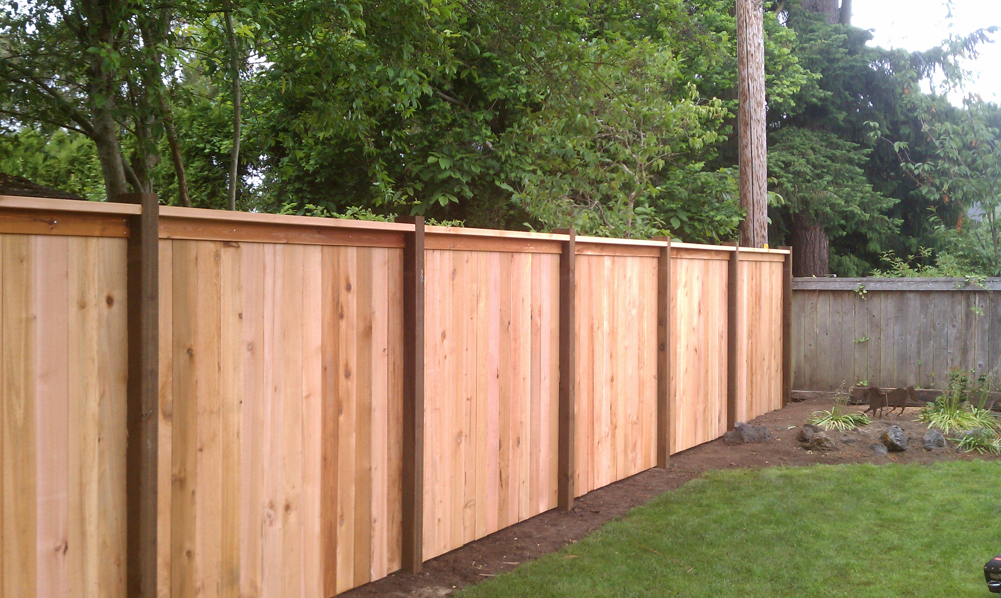 Fence Contractor Eugene Or Fence Construction Eugene